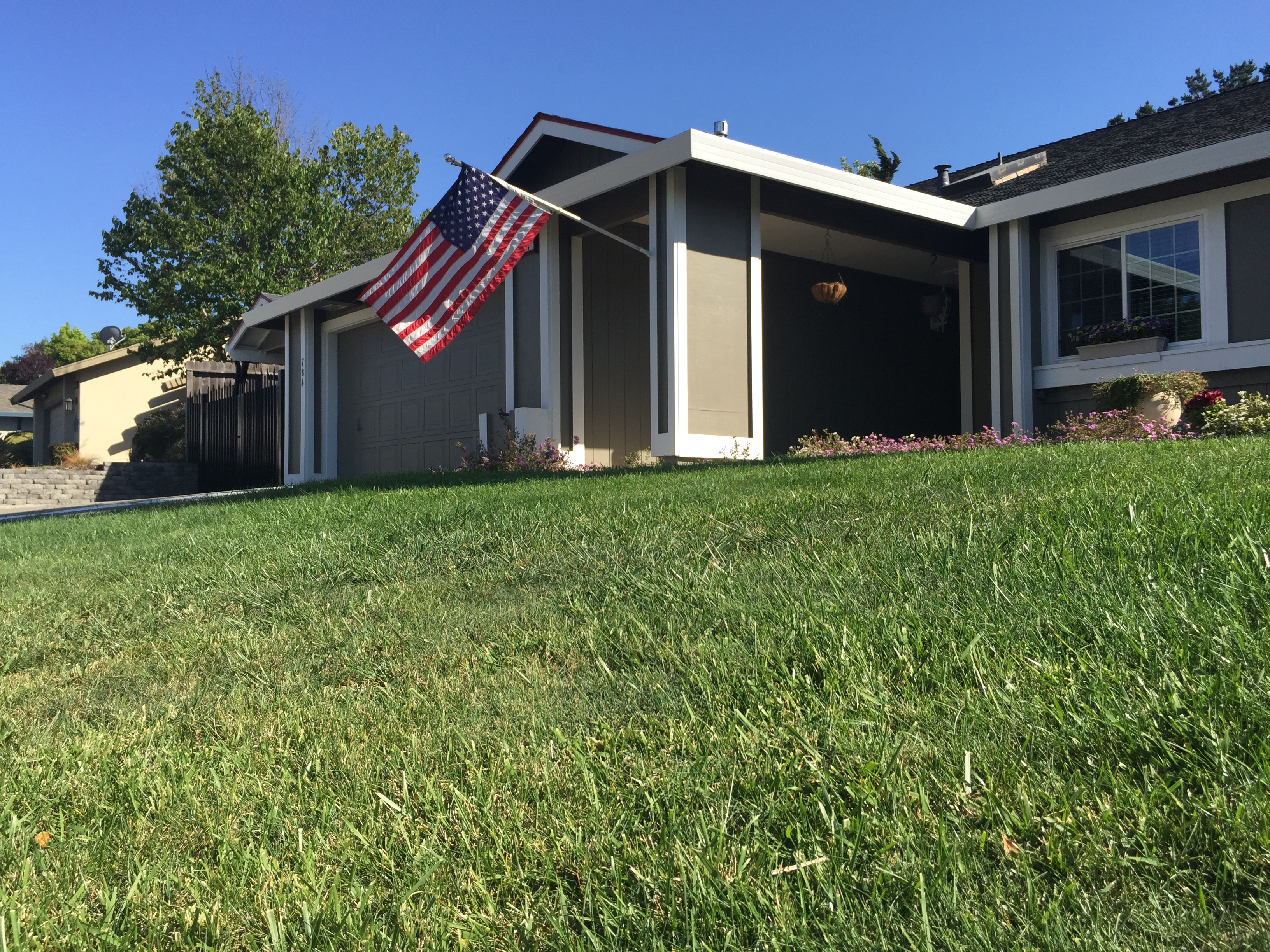 A lush lawn may be part of the American Dream--and the new California nightmare. (Craig Miller/KQED)