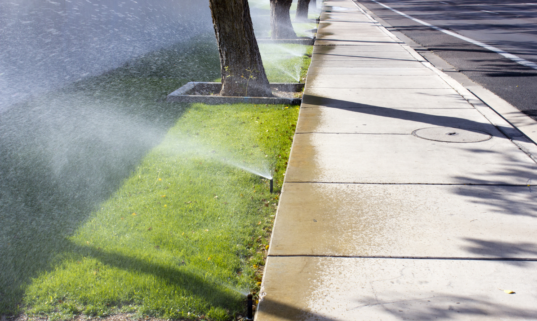 Lawns and medians are in the crosshairs of California's new mandatory water restrictions. (iStock/Getty Images)