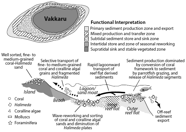Geoecological model of Vakkaru