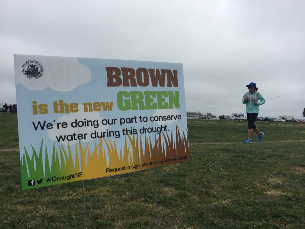 A sign on San Francisco's Marina Green publicizing the state's effort to save water. (Lindsey Hoshaw/KQED)