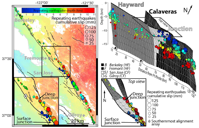 New model of the Hayward-Calaveras fault junction