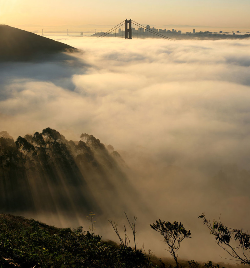 Fog settles over San Francisco Bay, with the Golden Gate Bridge, Coit Tower and Bay Bridge visible in the distance. (Brocken Inaglory/Wikimedia Commons)