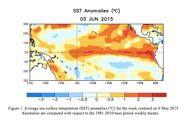 NOAA graphic shows the warm plume of water running east-west near the equator, the classic signature of El Nino.
