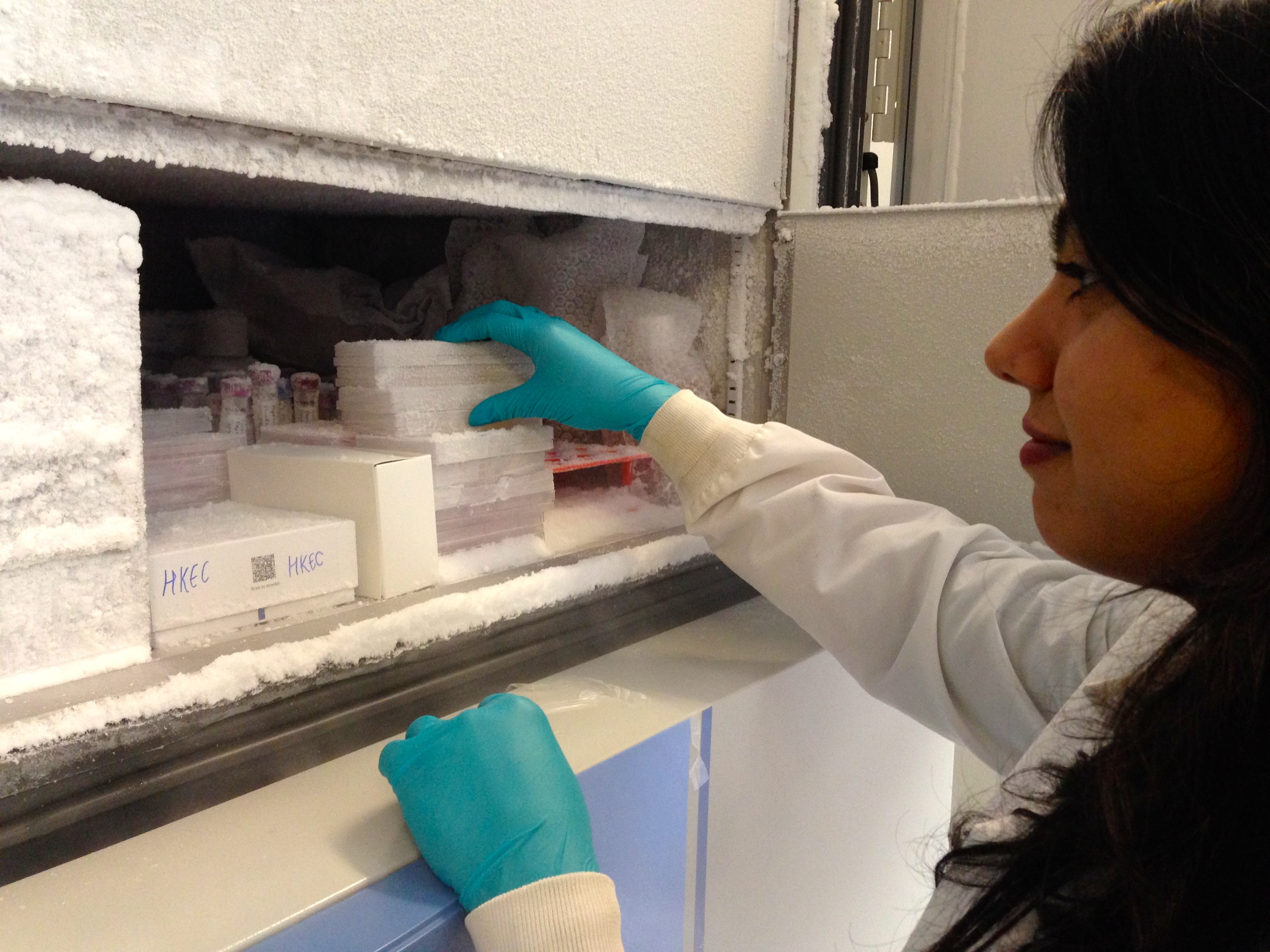 At Second Genome, hundreds of stool samples from patients with IBD and other diseases are stored in freezers. (Amy Standen/KQED)