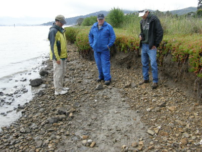 The team examines the eroded east side of Aramburu island, prior to the enhancement project.