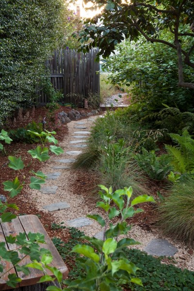 Replacing lawns with native plants and hardscaping like this plant adds visual interest and habitat for birds.  (Courtesy of EBMUD)
