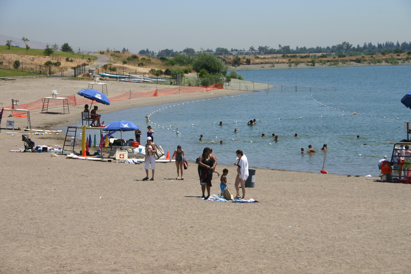 Toxic Algae In Local Lakes Puts Damper On Summer Swimming Kqed Science