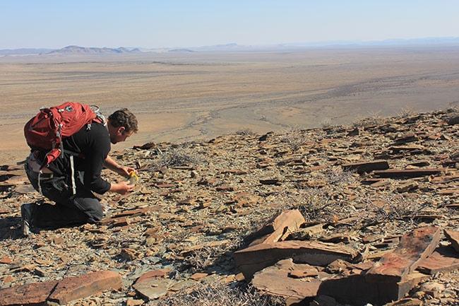 Darroch in Namibia