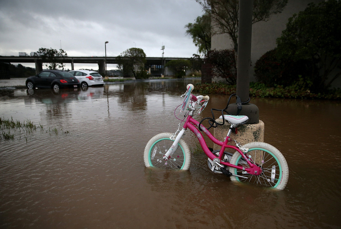 A child's bicycle sits in a flooded Mill Valley parking lot after a rare bout of heavy rains last December.