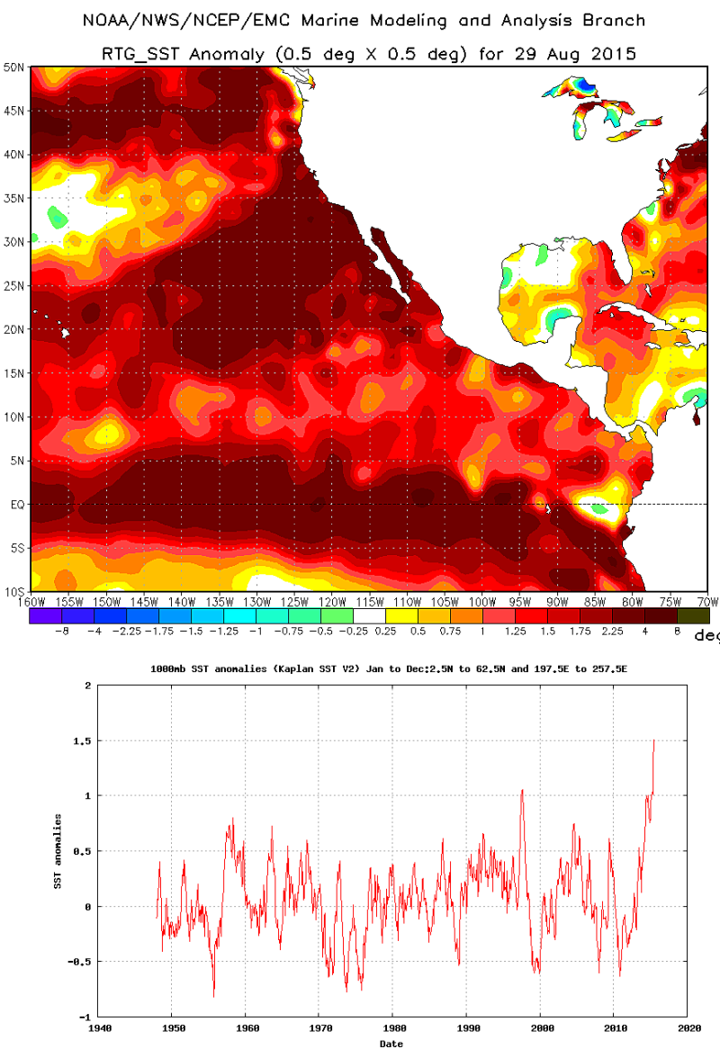 Extreme, record-breaking ocean temperatures extend from the coast of South America near Peru to the northern Gulf of Alaska.