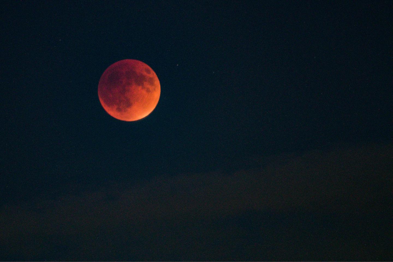 The Best Supermoon Eclipse Videos
