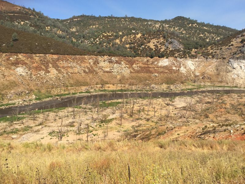 "Four years of drought have exposed standing forests that were underwater and ""bathtub rings"" that mark previous levels of the New Melones reservoir."
