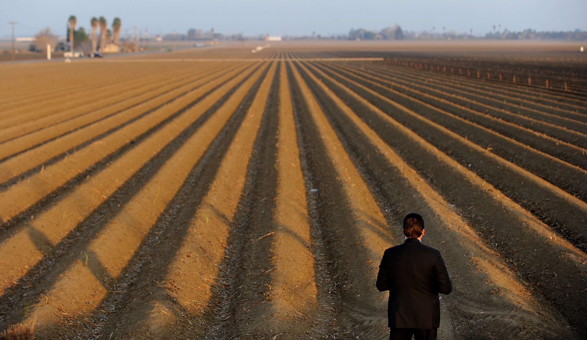 A secret service agent looks over a fallowed field near the Fresno County town of Firebaugh, during a February 2014 visit by President Obama to announce emergency drought relief measures.