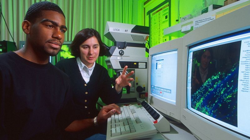 Microbiologist Amy Charkowski and graduate student Abdulah Harris observe the microscopic view of an alfalfa sprout root that has been experimentally contaminated with Salmonella. The microbes show up green or blue on the screen.