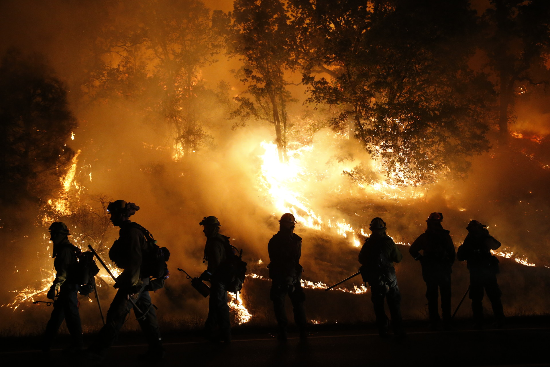 Firefighters with the Marin County Fire Department's Tamalpais Fire Crew monitor a backfire as they battle the Valley Fire on September 13, near Middletown. (Stephen Lam/Getty Images)