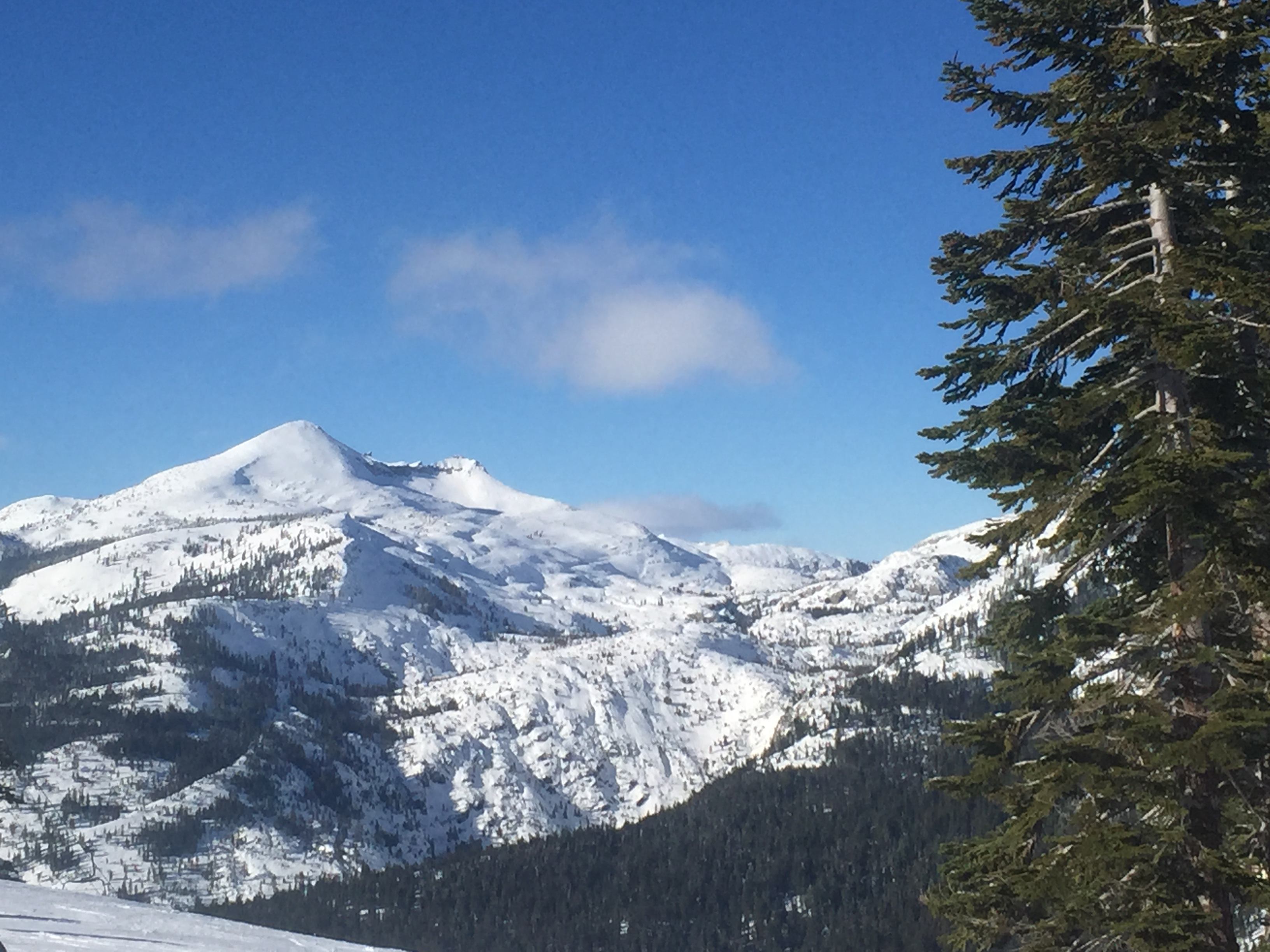 The Sierra snowpack looked promising in January, but dry days and high temperatures in February began the Big Shrink.