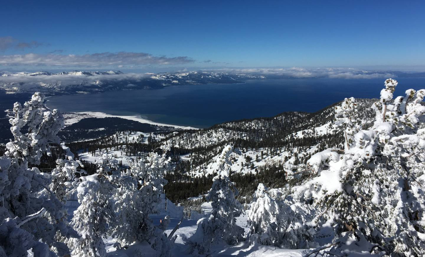 Cold December storms built hopes for a robust snowpack in the Sierra Nevada this winter.
