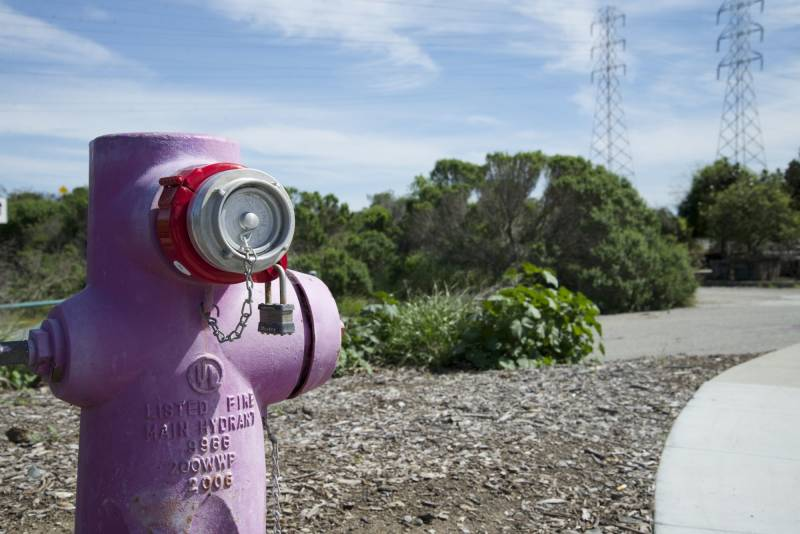 A purple colored hydrant designates a recycled water fill station in Mountain View, California.