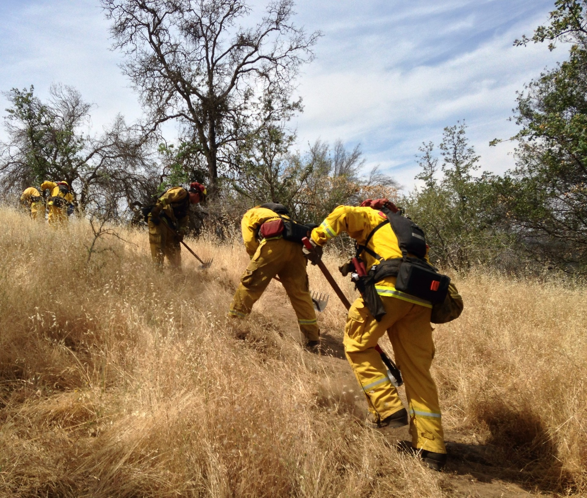 Crews clear a fire break in the Sierra foothills, in preparation for this summer's fire season.