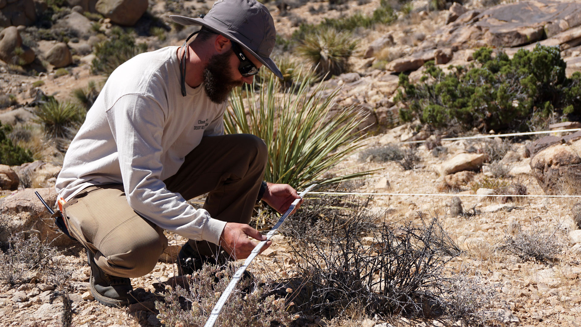 James Heintz of UC Riverside maps out plant life for a yearly ecosystem census.