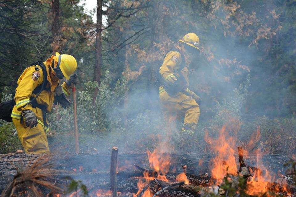 Cal Fire firefighters tending to a controlled pile burn as part of a fuel reduction project that helps reduce wildfire risk.