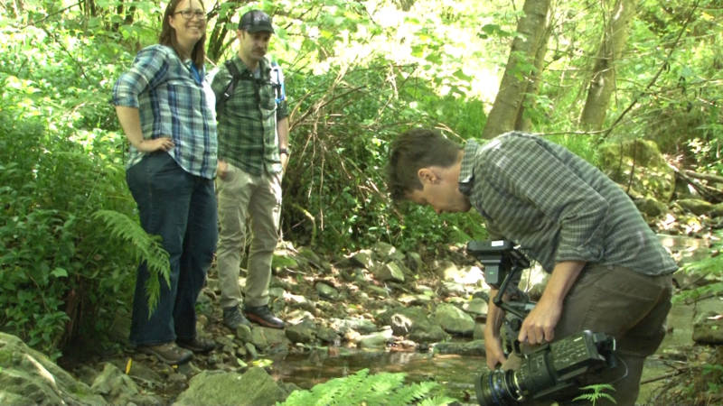 3 people near a stream filming caddisfly