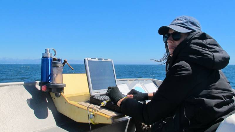 Taylor Nairn, of the Greater Farallones Association, records wildlife sightings along an observational transect as a member of the AV Fulmar's marine research crew.