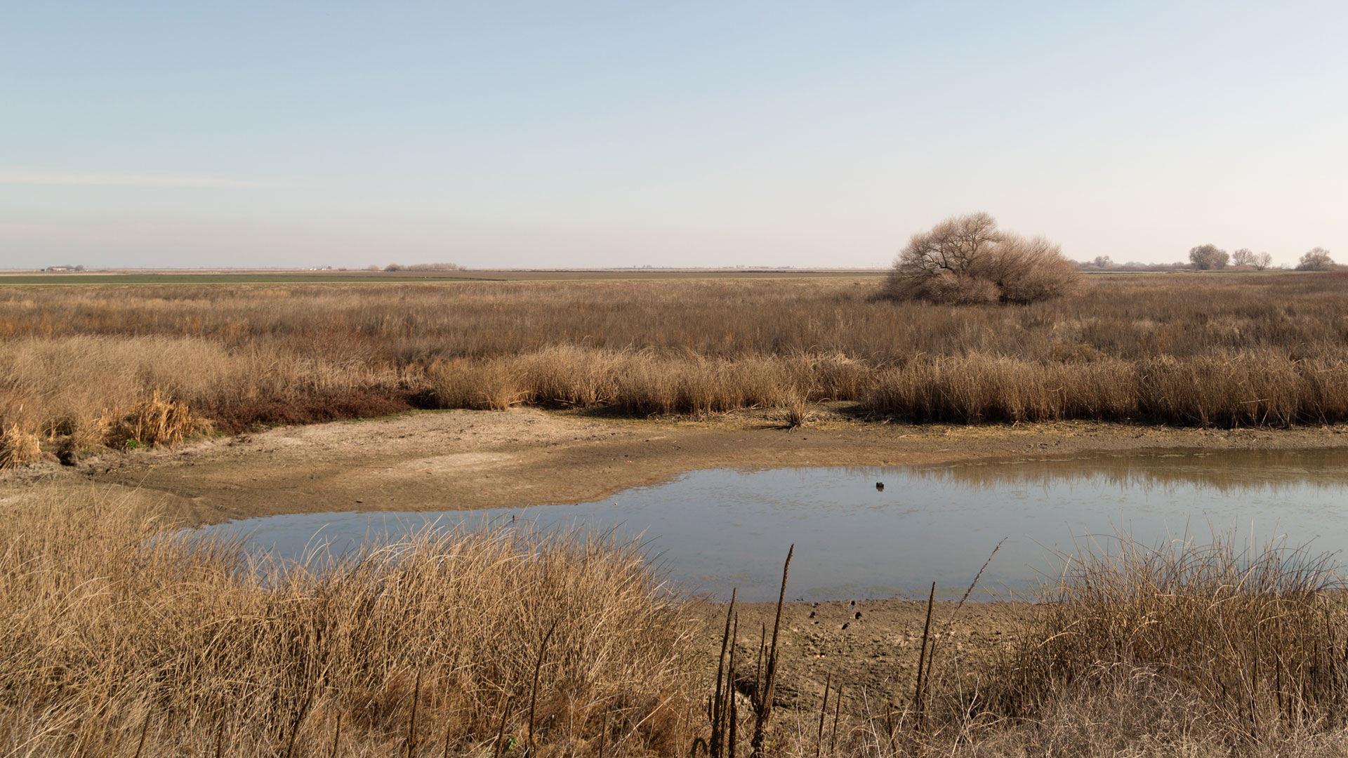 A dry channel of the San Joaquin River.