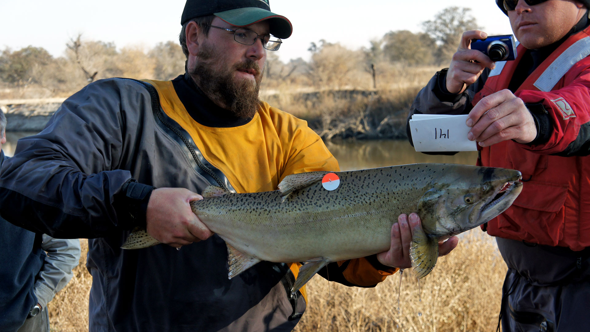 The biggest california water decision you ve never heard for San joaquin river fishing