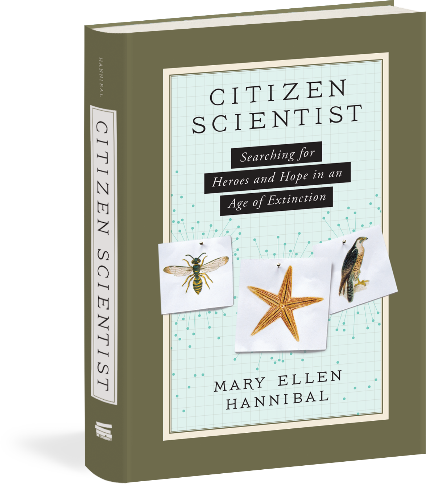 Mary Ellen Hannibal chronicles a research revolution happening in the Bay Area's back yard and beyond.