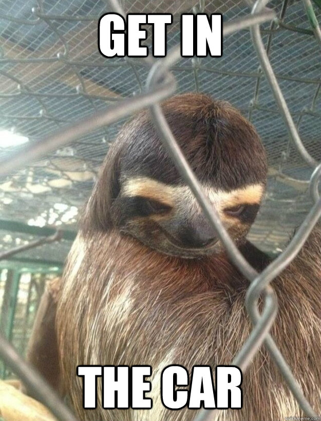 The creepy sloth meme.