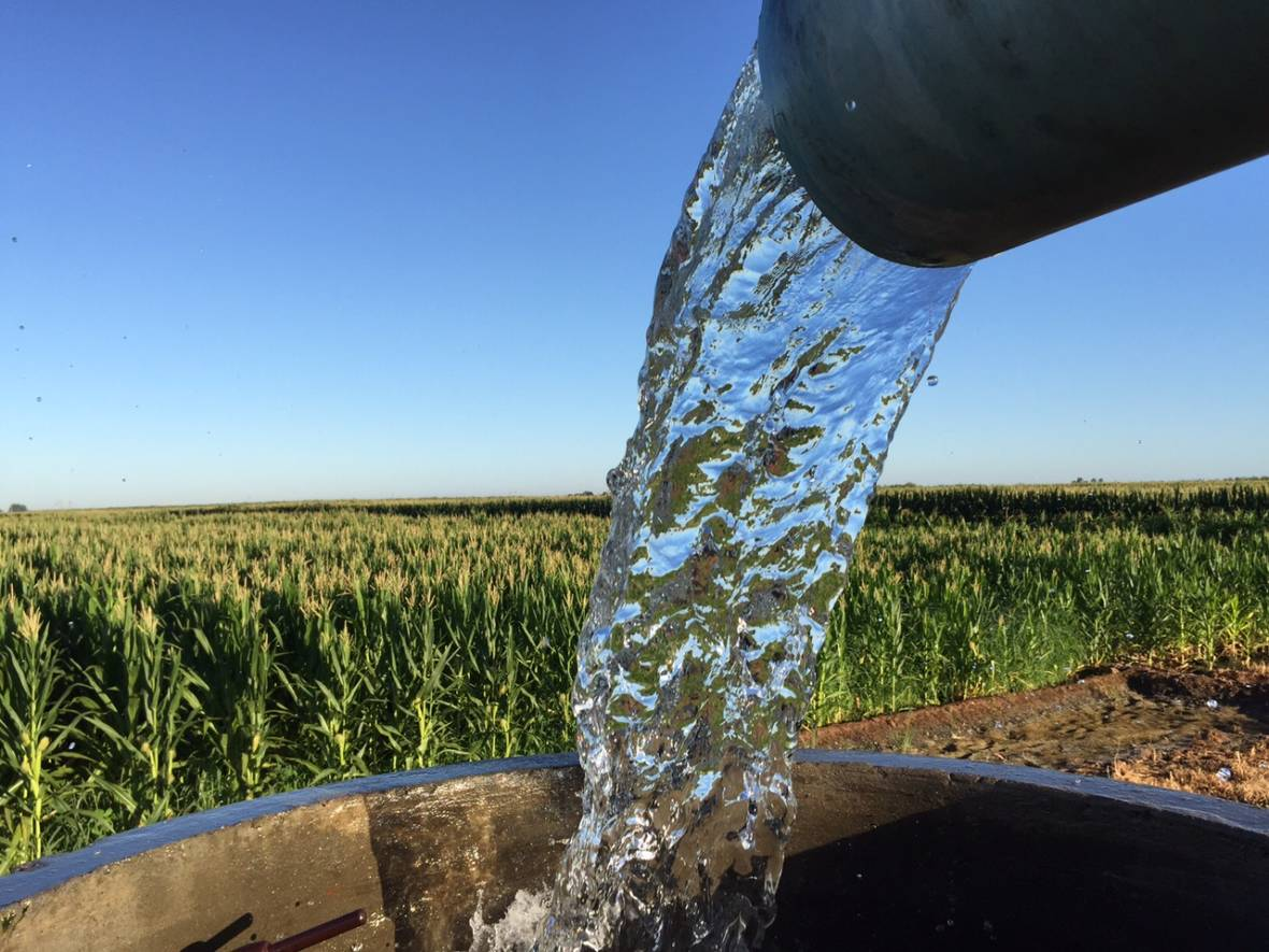 Trump's Pledge to 'Open Up the Water' for Valley Farms: Easier Said Than Done