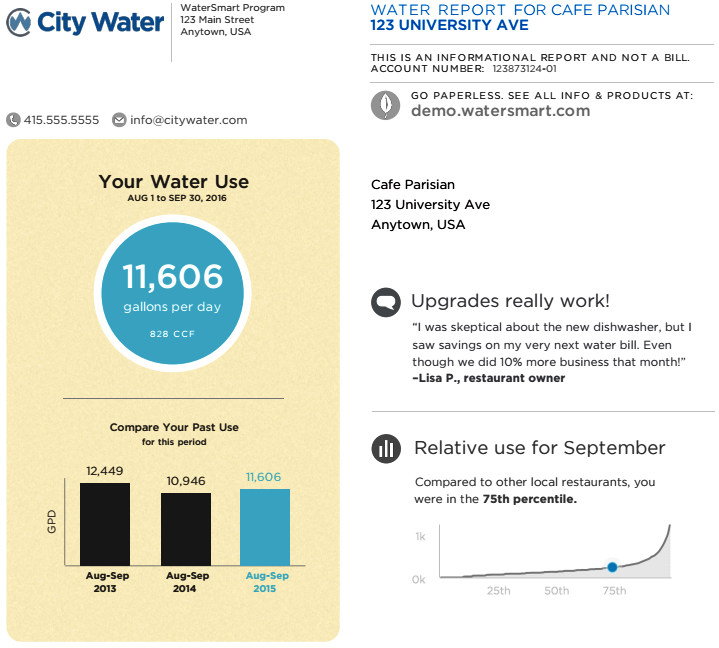 Part of what a WaterSmart Software Home Water Report could include for customers.