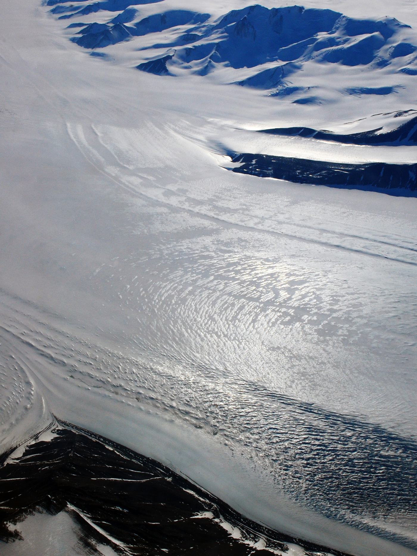 The Beardmore Glacier in Antarctica, as seen in 2008, near where the fossilized remains of an ancient beetle species were found.