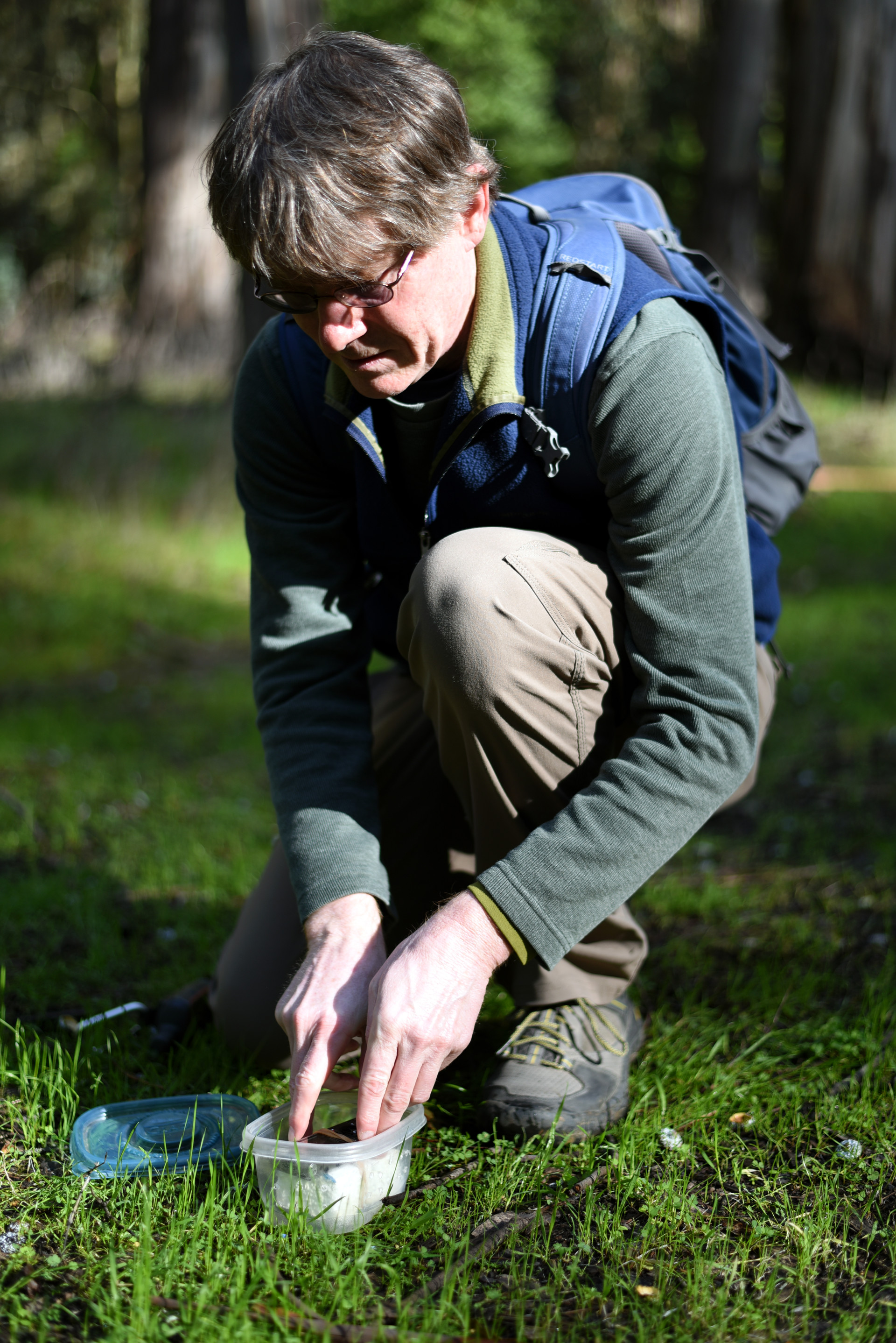 Brett Furnas placing a field recorder in Tilden Regional Park
