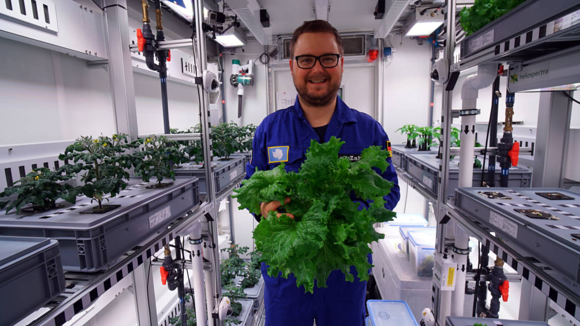 Vegetables Harvested in Antarctica Without Sun, Soil, or Pesticides