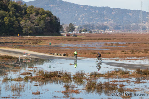 Like It Or Not, the Water Is Coming: Will the Bay Area Defend Against  Rising Seas, or Embrace Them? - Like It Or Not, The Water Is Coming: Will The Bay Area Defend