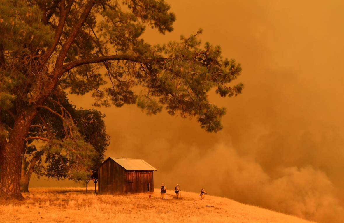Fuel Matters: Why Wildfire Behavior Depends on What's Burning
