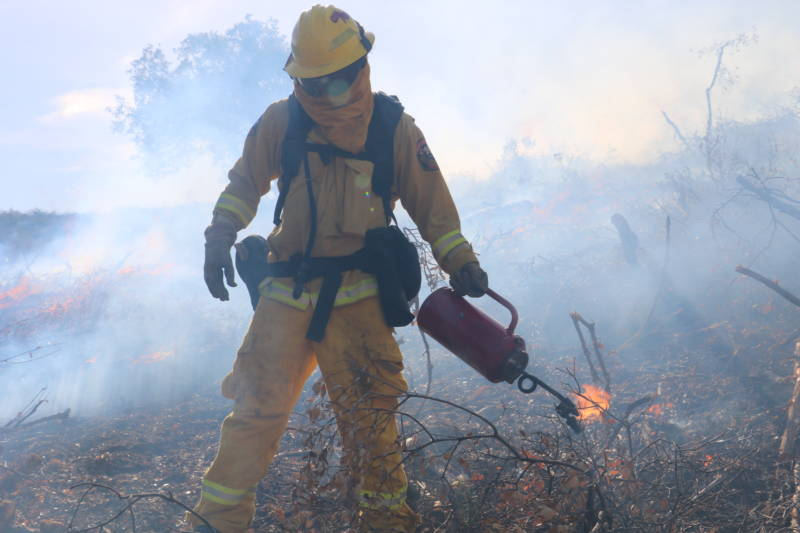 Why California's Best Strategy Against Wildfire Is Hardly Ever Used