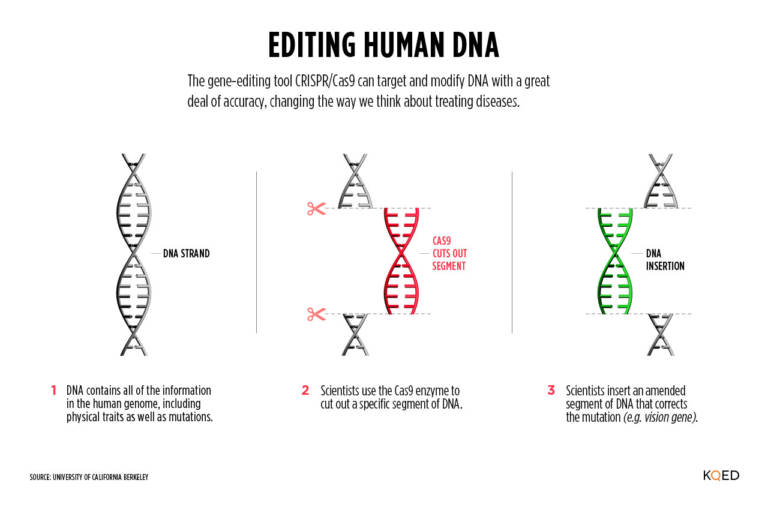 Trying to Understand the CRISPR Baby? Five Things to Read