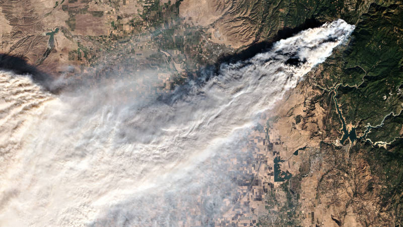 Wildfire Smoke, Once Considered Sterile, Teems With Life