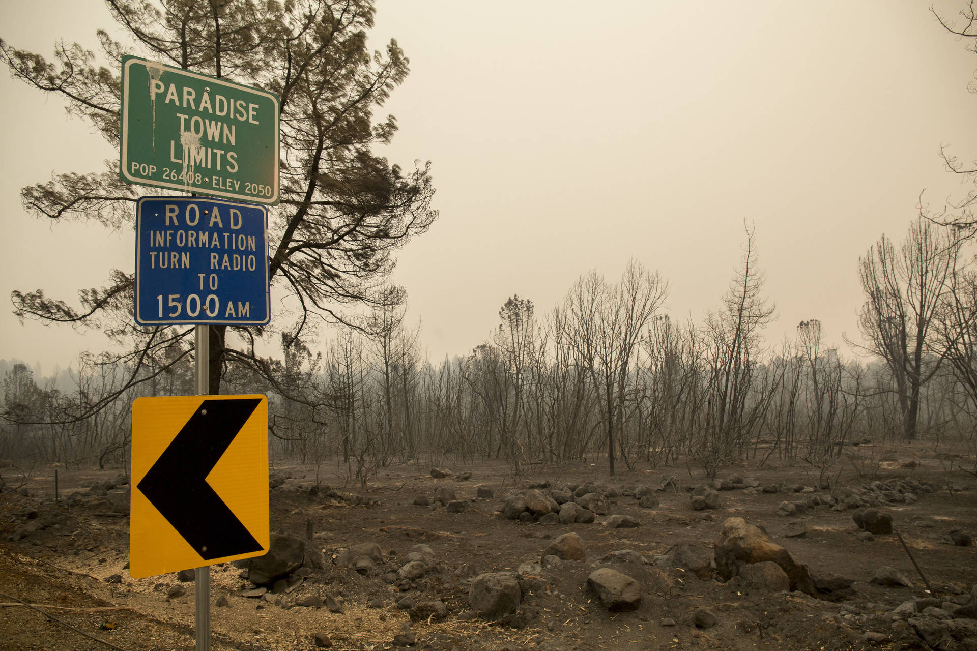 The Paradise city limit stands in front of burned-out landscape on Nov. 13, 2018. High rains expected to hit that charred ground could lead to flooding and mudslides in the burn area. Anne Wernikoff/KQED