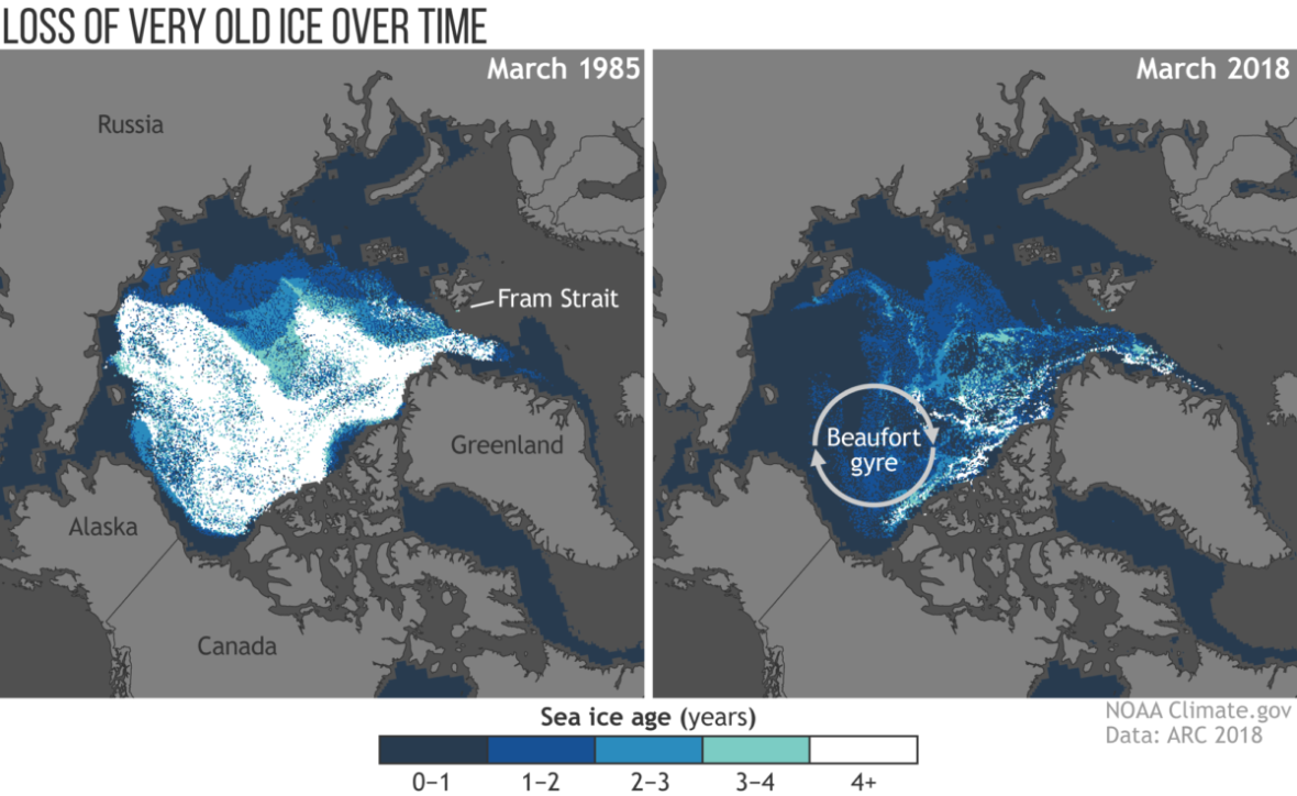 Arctic Report Card Shows 'Most Unprecedented Transition in History'