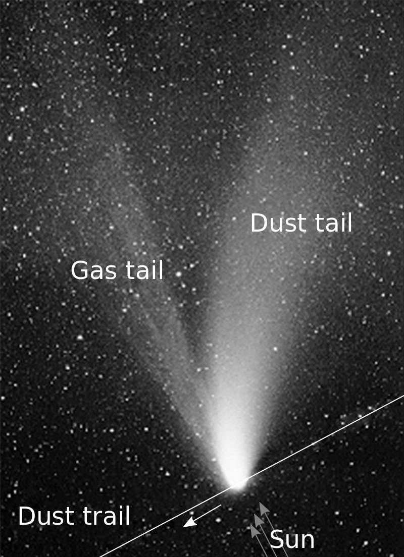 A comet often has more than one tail: a gas tail and a dust tail. Pressure from sunlight pushes both tails away from the sun, but lighter gases are blown more strongly than the heavier dust particles, and are separated. The largest and heaviest dust particles are affected least by sunlight pressure, and tend to remain within the path of the comet's motion--this is the stream of dust that produces a meteor shower.