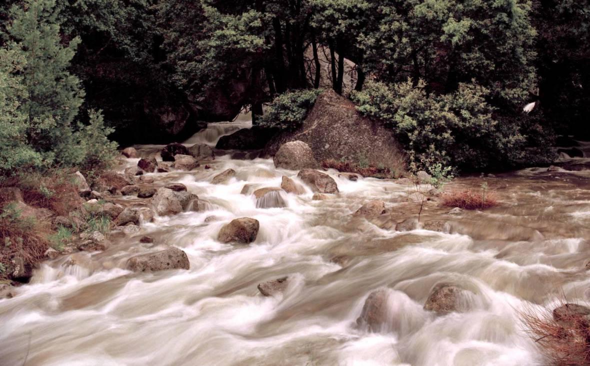 California Adopts Landmark River Plan to Bring Back Salmon