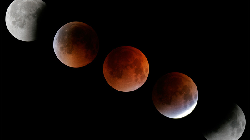 Sequence of pictures showing the progression of the August 28 2007 Total Lunar Eclipse, from Full Moon to Partial Eclipse to Total Eclipse, and back to Full.  Conrad Jung