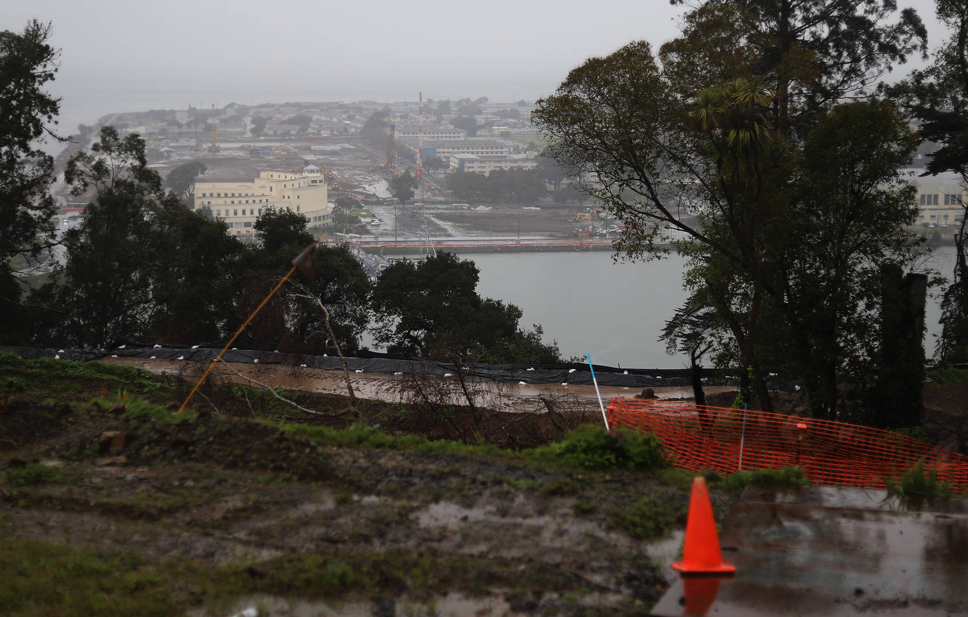 View of Treasure Island. The toxic compounds PFOS and PFOA, a type of PFAS, are present on the island at levels far beyond EPA guidelines. Lindsey Moore/KQED