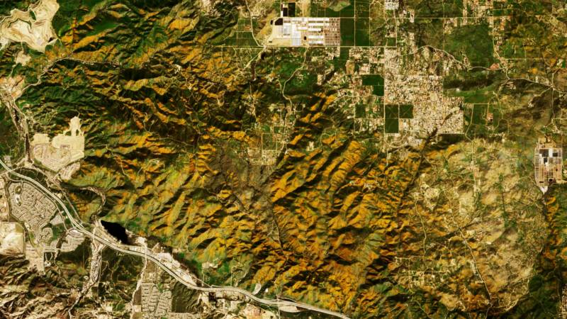See Super Blooms Transform California Landscape via Satellite