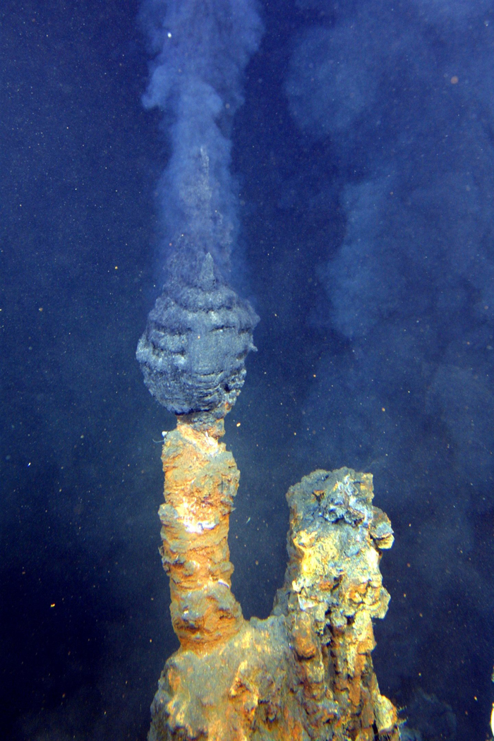 "An active hydrothermal ""chimney"", the mineral structure that forms around a hydrothermal vent."