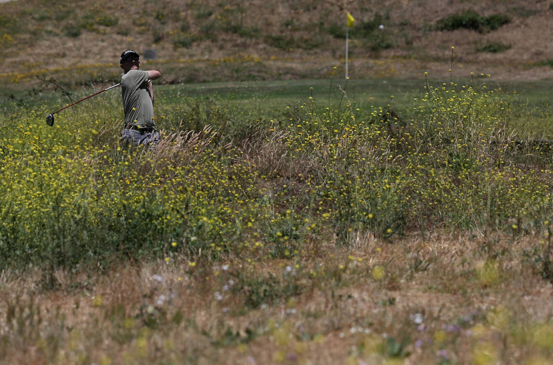 This Year's Bay Area Pollen Season Is Really Bad. Here's Why
